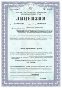 Лицензия ООО
